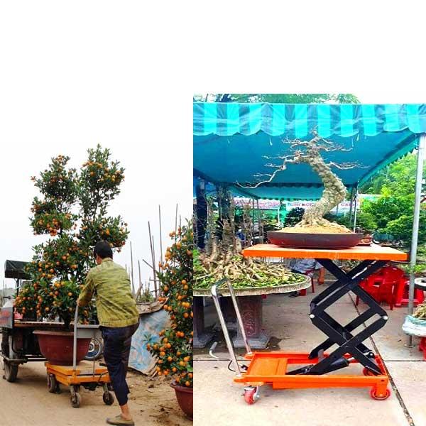 Bán xe nâng chậu cảnh tại Bắc Giang uy tín giá rẻ nhất