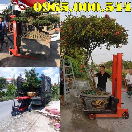 Bán xe nâng vận chuyển cây cảnh tại Vĩnh Phúc hàng sẵn giá cạnh tranh nhất